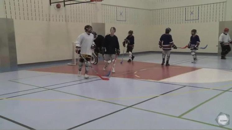 Vidéo : Activité éducative - Partie de hockey